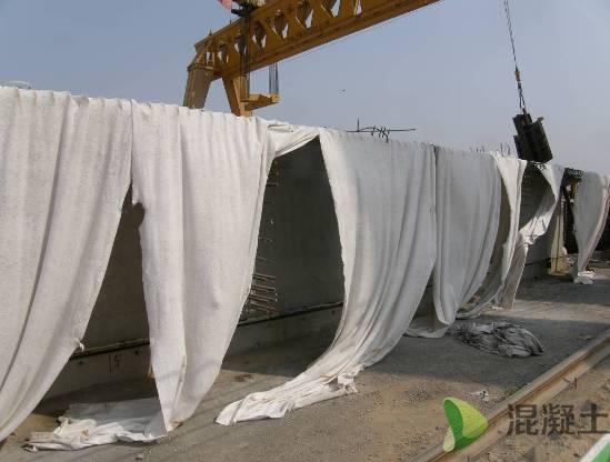 《高性能混凝土 及混凝土结构耐久性》之桥梁61